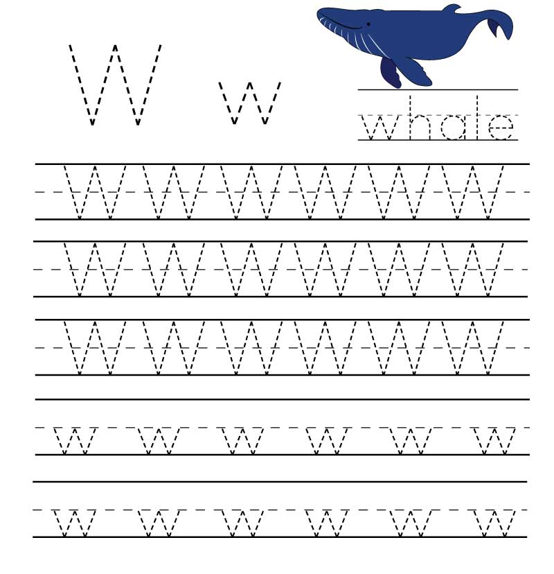 пропись английского алфавита буква w