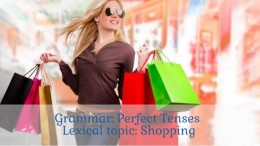 perfect tenses exercises