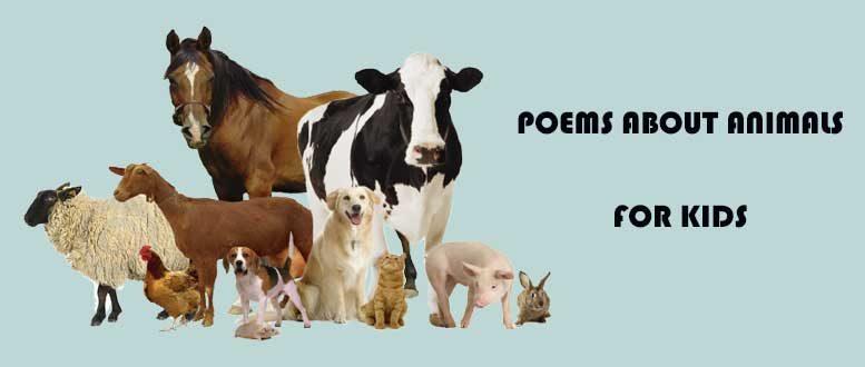 стихи на английском с переводом про животных